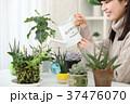 植物女子 37476070