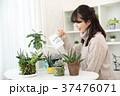 植物女子 37476071