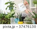 植物女子 37476130