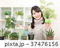 植物女子 37476156