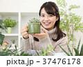 植物女子 37476178