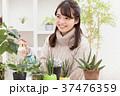 植物女子 37476359