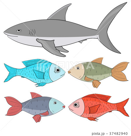 Fishes. Collection of colored fishes and shark 37482940