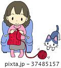 編み物 女性 37485157