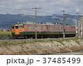 電車 鉄道 両毛線の写真 37485499