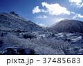 天狗岳 冬山 雪山の写真 37485683