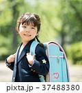 子供 小学生 入学式 イメージ 37488380