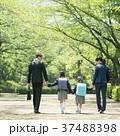 家族 小学生 通学 通勤 入学式 イメージ 37488398