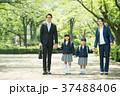 家族 小学生 通学 通勤 入学式 イメージ 37488406