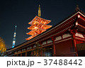浅草寺 五重塔と東京スカイツリー 夜景 2018年1月撮影 ※改修工事後 37488442