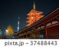 浅草寺 五重塔と東京スカイツリー 夜景 2018年1月撮影 ※改修工事後 37488443