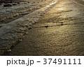 吉野川の堰 37491111