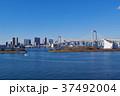 レインボーブリッジ 都市風景 快晴の写真 37492004