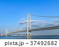 明石海峡大橋 青空  37492682