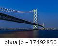 明石海峡大橋 夜景 37492850