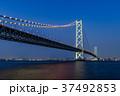 明石海峡大橋 夜景 37492853