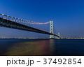 明石海峡大橋 夜景 37492854