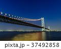 明石海峡大橋 夜景 37492858