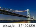 明石海峡大橋 夜景 37492859