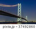 明石海峡大橋 夜景 37492860