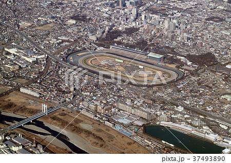 東京競馬場付近を空撮 37493890