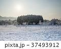雪 雪景色 積雪の写真 37493912