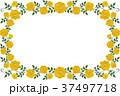 フレーム 枠 花のイラスト 37497718