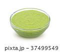 わさび ワサビ 山葵の写真 37499549