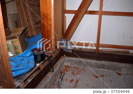 大工さんの仕事:現役職人 37504046