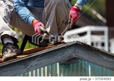 大工さんの仕事:現役職人 37504093