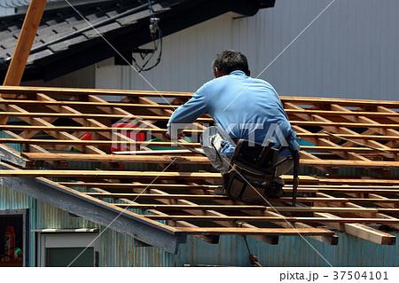 大工さんの仕事:現役職人 37504101