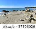 海 砂浜 岩の写真 37506029