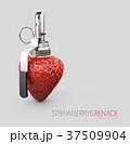いちご イチゴ 苺のイラスト 37509904