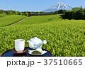 富士山 青空 茶畑の写真 37510665
