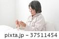 シニア 体温計 37511454