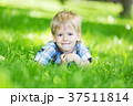 Little boy laying on the grass loan in the park 37511814