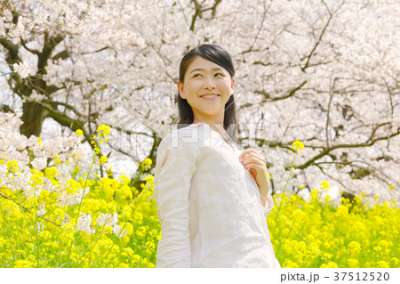 女性 桜と菜の花 37512520