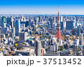 東京 東京タワー 都市風景の写真 37513452