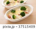 料理 洋食 グラタンの写真 37515409