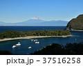 西伊豆 富士山 海の写真 37516258