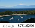 西伊豆 富士山 海の写真 37516259