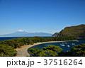 西伊豆 富士山 海の写真 37516264