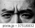 顔 目 眼の写真 37516832
