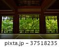 新緑の談山神社 37518235