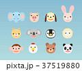 動物 キャラクター 顔のイラスト 37519880