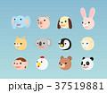 動物 キャラクター 顔のイラスト 37519881