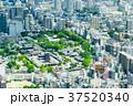 大阪府 大阪 都市の写真 37520340