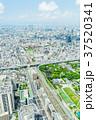 大阪府 大阪 都市の写真 37520341