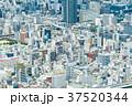 大阪府 大阪 都市風景の写真 37520344