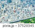 大阪府 大阪 都市の写真 37520345